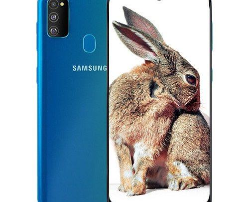 Samsung Galaxy M30s - Jawalmax